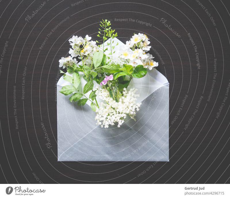 Briefumschlag mit einem Bouquet von Frühlingsblumen auf schwarzem Grund Blume Blumen und Pflanzen Blüte Stillleben Natur Farbfoto Sommer Nahaufnahme weiß gelb