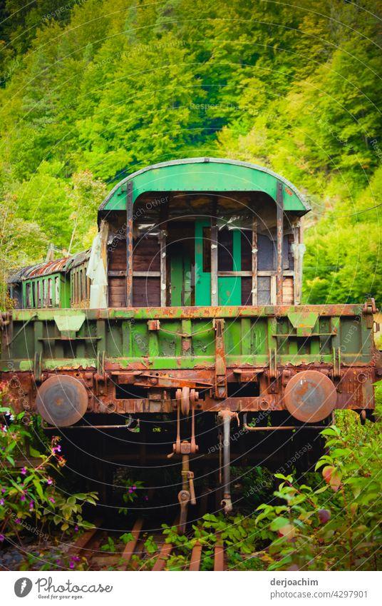 Alter rostiger Eisenbahn Zug steht  im Grünen,  ausgemustert und abgestellt. Gleise Außenaufnahme Verkehr zug fahren Ferien & Urlaub & Reisen Bahn