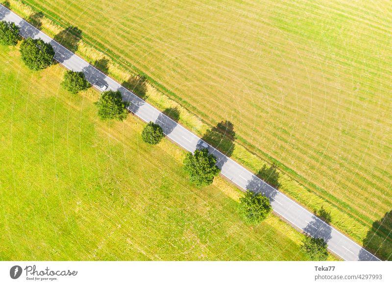 Die Landstraße Straße Straßenverkehr Landwirtschaft land Sommer Luftbild acker wiese