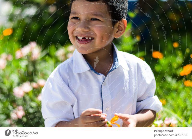 Kleiner Junge mit einem Gänseblümchen in der Hand und lachend Sommer Frühling Glück Blume im Freien niedlich wenig Lächeln Feld Kleinkind Kind Gras gelb klein