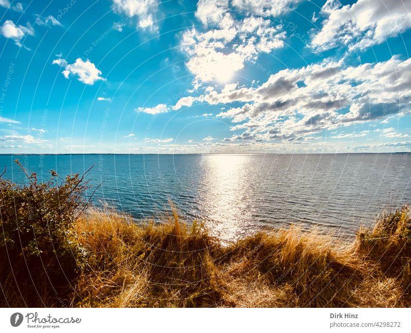 Blick von einer dänischen Insel auf die Ostsee Meerblick Ferien & Urlaub & Reisen Tourismus Küste Landschaft Sommer Horizont Himmel Außenaufnahme Menschenleer