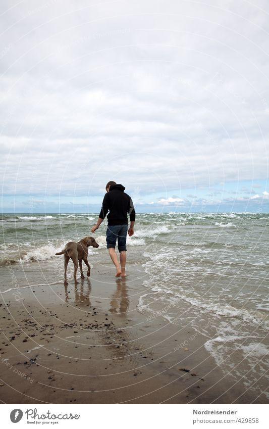 Zwei Freunde...zwei Meere Ferien & Urlaub & Reisen Ferne Freiheit Wellen Mensch Mann Erwachsene Wind Sturm Küste Strand Nordsee Ostsee Wege & Pfade Tier Hund