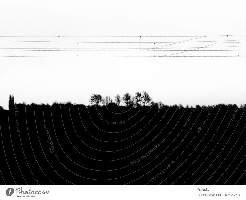 Bahntrasse Oberleitungen Feld einsam Degersen Einsamkeit Dorf Eisenbahn Regionalbahn Bäume