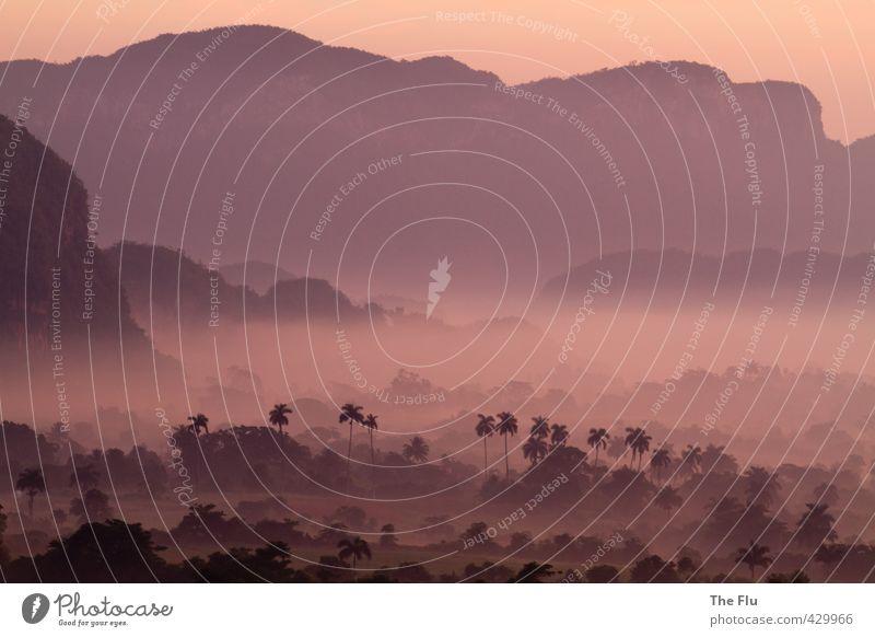 Kubanisches Nebelmeer Himmel Natur Ferien & Urlaub & Reisen Pflanze Sommer Sonne Baum Erholung Landschaft Ferne Wald Berge u. Gebirge Felsen orange Tourismus