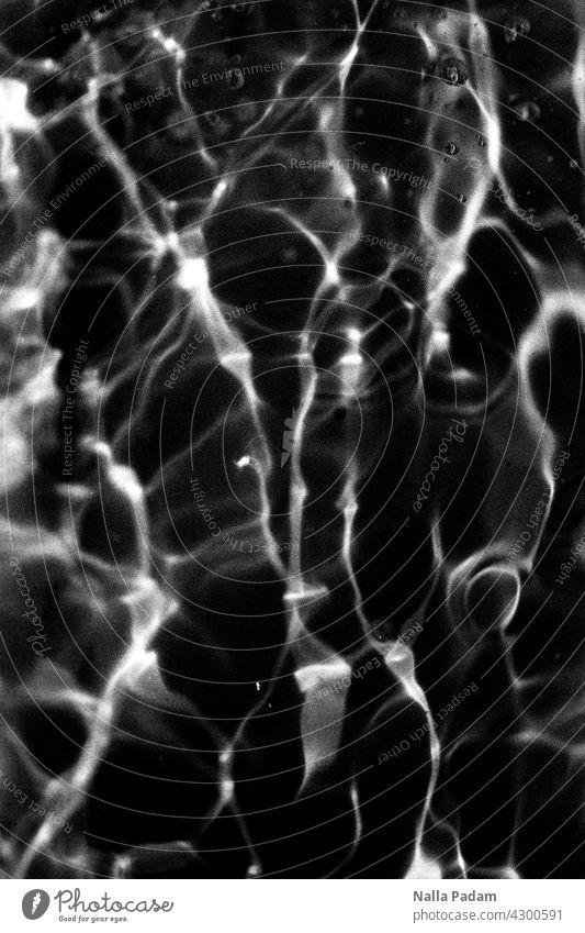 Wasser und Licht analog Analogfoto sw Schwarzweißfoto schwarzweiß Reflexion Lichtreflexion Muster abstrakt Außenaufnahme Natur nass