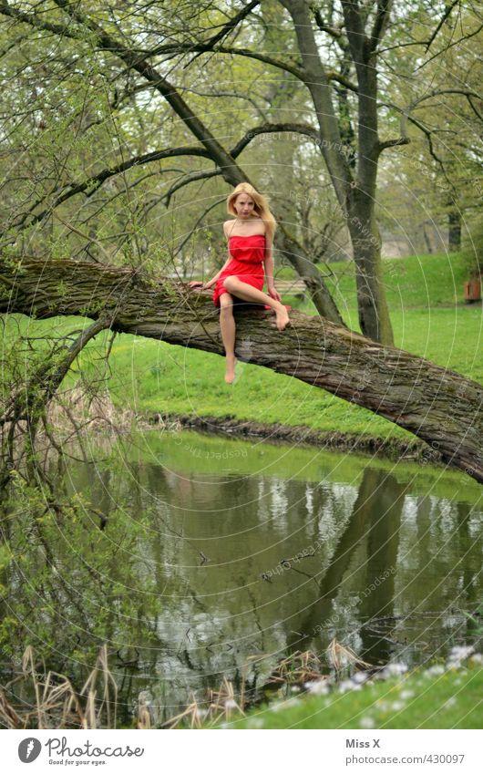 rot auf grün Mensch Natur Jugendliche schön Sommer Baum Junge Frau Wald Erwachsene 18-30 Jahre Erotik feminin Frühling See Park
