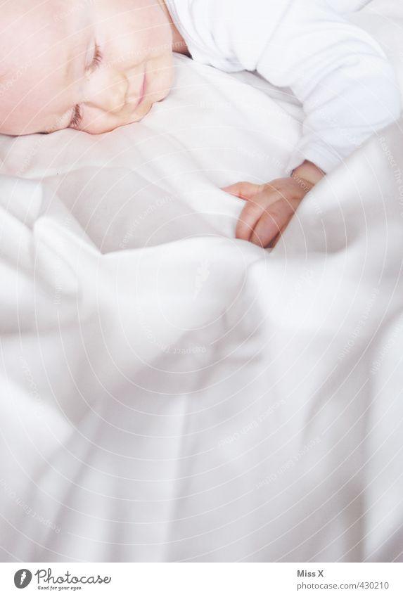 Natzeln Bett Kinderzimmer Mensch Baby Kleinkind Kindheit Leben 1 0-12 Monate schlafen träumen klein niedlich Gefühle Stimmung Zufriedenheit Schutz Geborgenheit