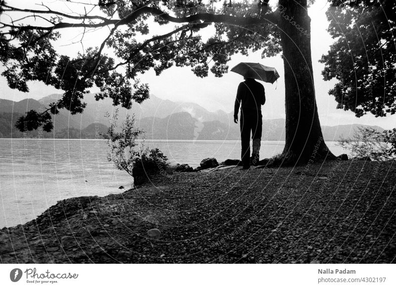 Person mit Regenschirm am See in den Bergen analog Analogfoto sw Schwarzweißfoto schwarzweiß Außenaufnahme Wasser Baum Natur Einsamkeit allein nass grau