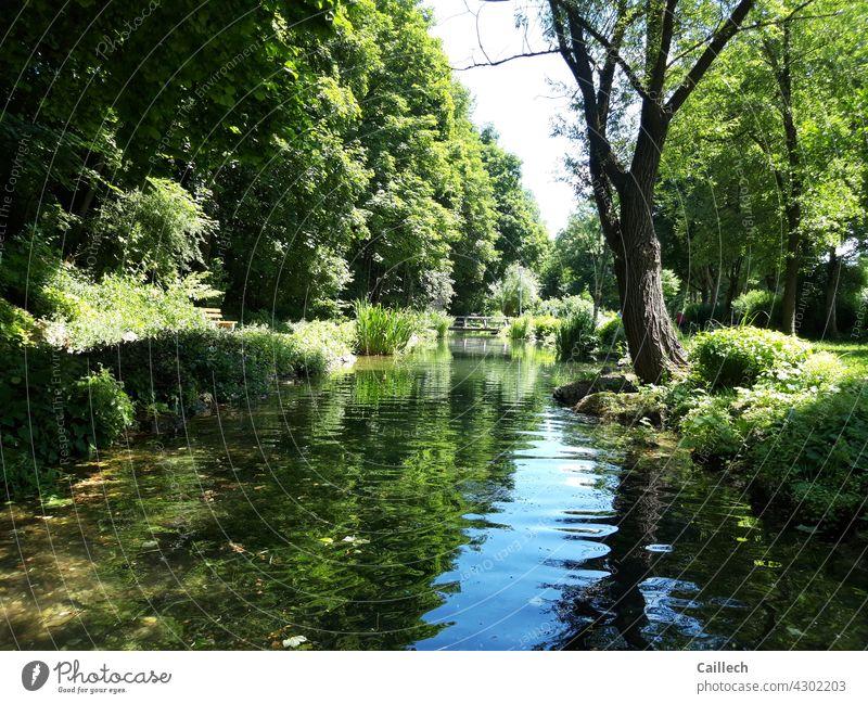 Idyllischer Teich in einem ruhigen Park Idylle Sommer Freiheit freizeit Ruhe Harmonie friedlich Frieden Bäume blau grün weite Wetter Außenaufnahme Farbfoto