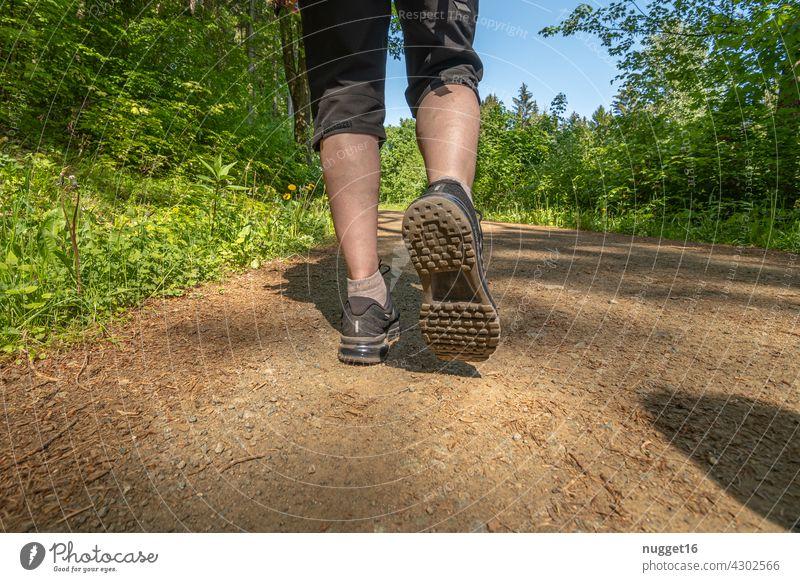 wandernde Frau auf einem Waldweg Travel Reise reisen Natur Landschaft Berge u. Gebirge Ferien & Urlaub & Reisen Außenaufnahme Farbfoto Tourismus Reisefotografie