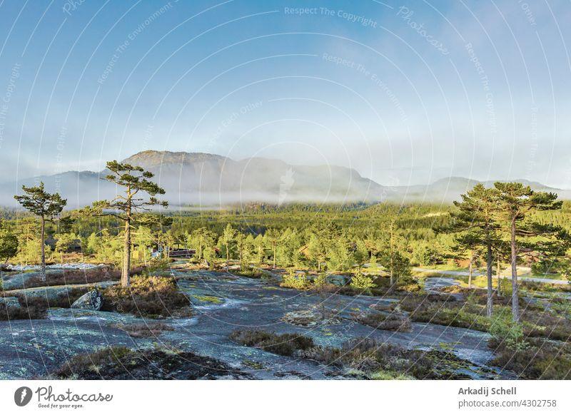 Morgen Sonnenaufgang Nebel Wolken und Berge Natur Landschaft Nissedal Norwegen. Kiefer neblig Ansicht Cloud natürlich malerisch Trekking hytte wandern Dorf