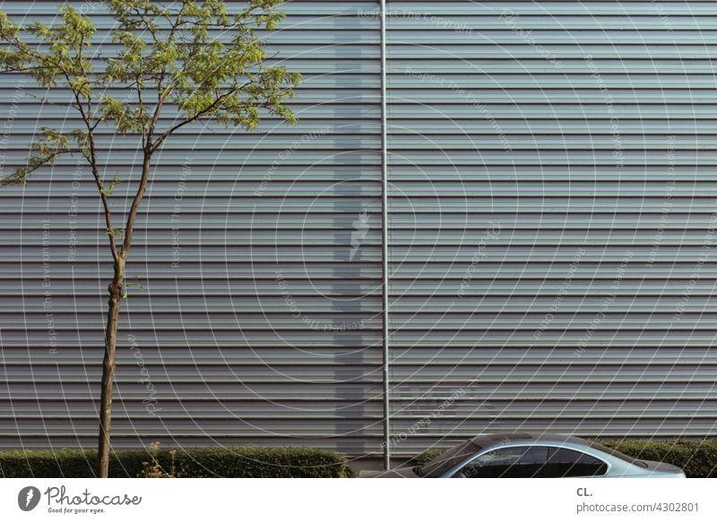 baum, hecke, auto Baum Wand Auto Hecke Fallrohr grün grau Sommer Halle Parkplatz Industriegebiet Gewerbegebiet Gebäude Lagerhalle Strukturen & Formen