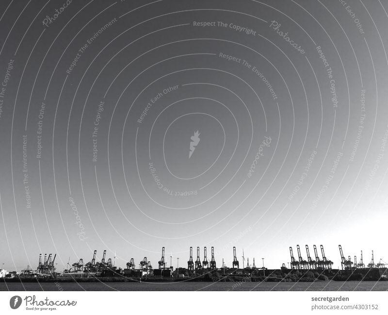 Der Himmel über Hamburg. Kran Kräne Schwarzweißfoto Elbe Wolkenloser Himmel Hafen Wirtschaft Schifffahrt Skyline Wasser Hafenstadt Hamburger Hafen Außenaufnahme