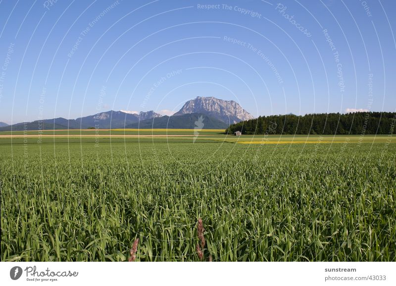 Traunstein-Panorama Berge u. Gebirge groß Salzkammergut