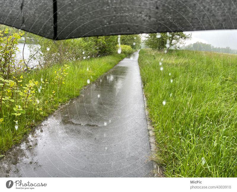 Regen tropft von einem Schirm - Regenwetter Tropfen grau Spaziergang sattes grün Wiese Wege & Pfade Natur Regentropfen nass Wassertropfen schlechtes Wetter