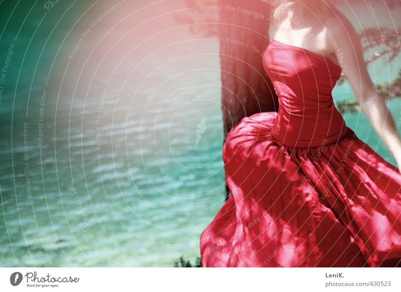 tanz! Sommer Tanzen Tanzschule Körper 1 Mensch Tanzveranstaltung Tänzer Tangotänzer Natur Wasser Rock frei mehrfarbig rot türkis Lebensfreude Kraft Bewegung