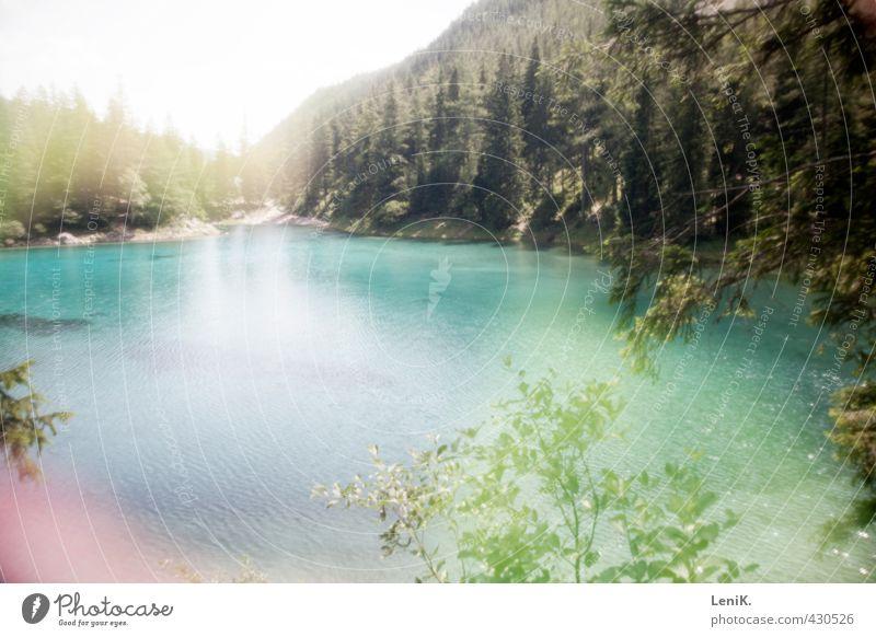Grüner See Natur Sommer Baum Erholung Landschaft ruhig Wald Berge u. Gebirge Schwimmen & Baden natürlich träumen Kraft Zufriedenheit wandern Ausflug