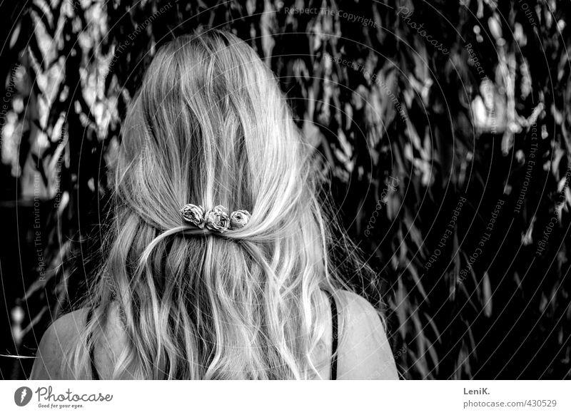 Blumenknoten Haare & Frisuren Friseur Junge Frau Jugendliche 1 Mensch 18-30 Jahre Erwachsene Natur Baum Rose Blüte Trauerweide Accessoire blond langhaarig