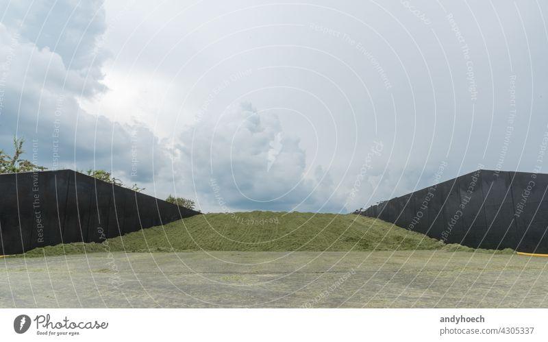 Frisches Silo auf dem Lande mit bewölktem Himmel landwirtschaftlich Landarbeiter Ackerbau Tier Tierfutter cereale Klemmsilo Cloud Mähdrescher Mais Landschaft