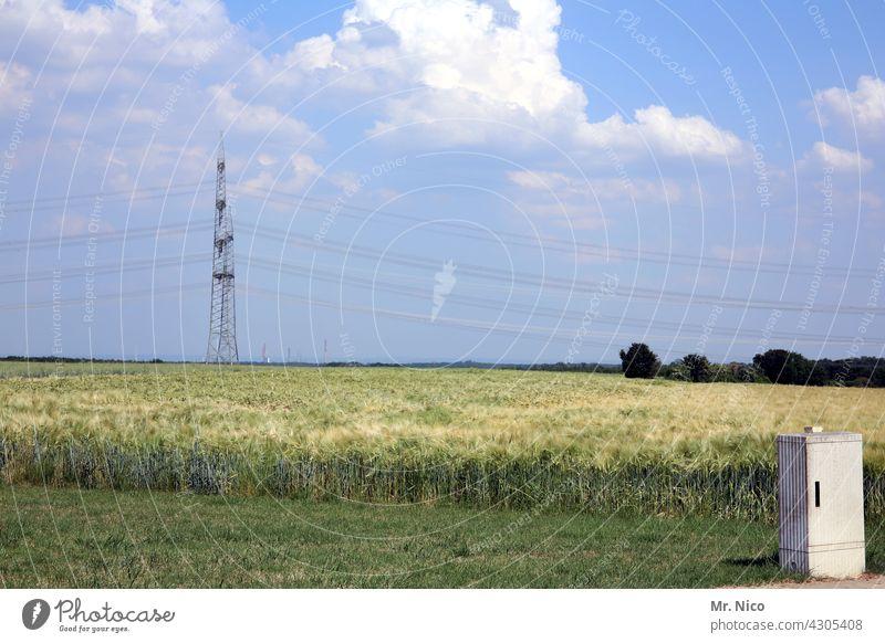 Energiefeld Landwirtschaft Landschaft blauer Himmel Natur Ackerbau Agrarwirtschaft Feld ländlich Wiese Sommer Schönes Wetter Hochspannungsleitung Getreidefeld