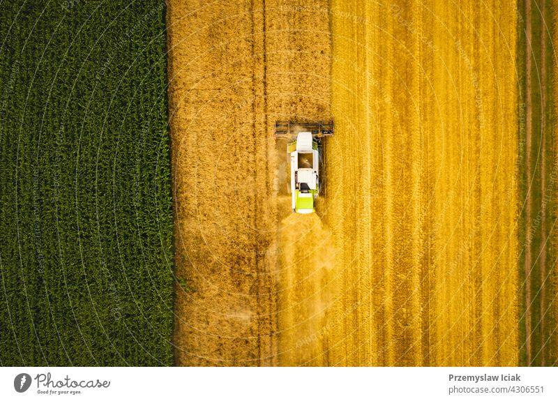 Ein moderner Mähdrescher arbeitet auf einem Weizenfeld, Luftaufnahme Business Antenne Sommer Natur Industrie Technik & Technologie reif Ernte Feld Ackerbau
