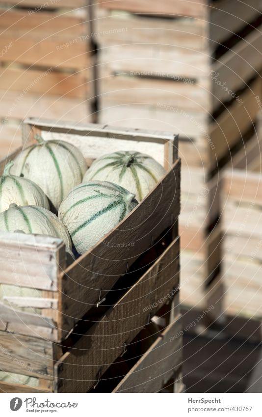Ne Ladung Melonen grün Holz braun Lebensmittel Frucht Ordnung frisch Ernährung süß rund eckig Vitamin Stapel Verpackung Marktplatz Versand