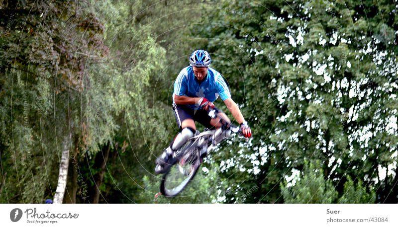 Bunnyhop Baum grün blau Fahrrad Extremsport
