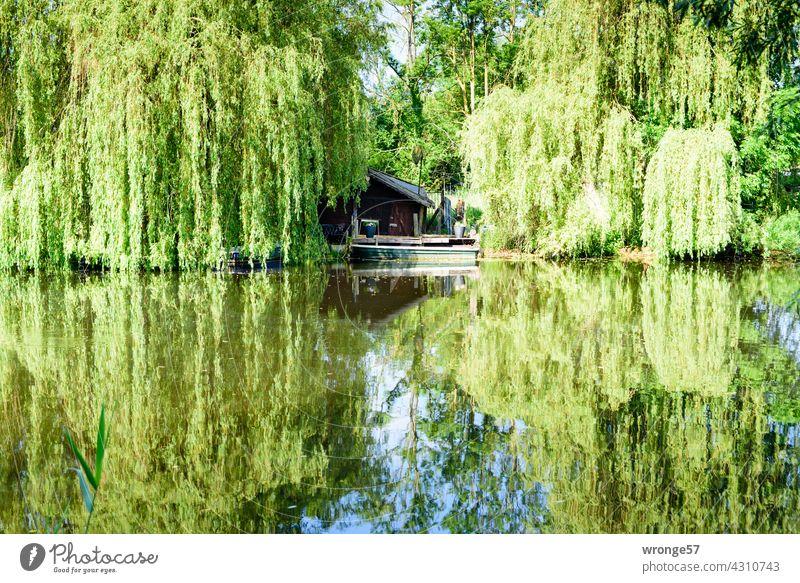 Zwischenräume | in der Natur THEMENTAGE Flussufer Warnow Warnowufer Spiegelung Erholung Rückzugsort Wasser Außenaufnahme Farbfoto Himmel Reflexion & Spiegelung