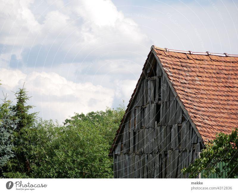 Alte rustikale Holzfassade einer Scheune in einem kleinen Dorf Fassade alt zerfallen Haus ländlich Wand Bauernhof Bäume Gebäude Außenaufnahme Dach eingebettet