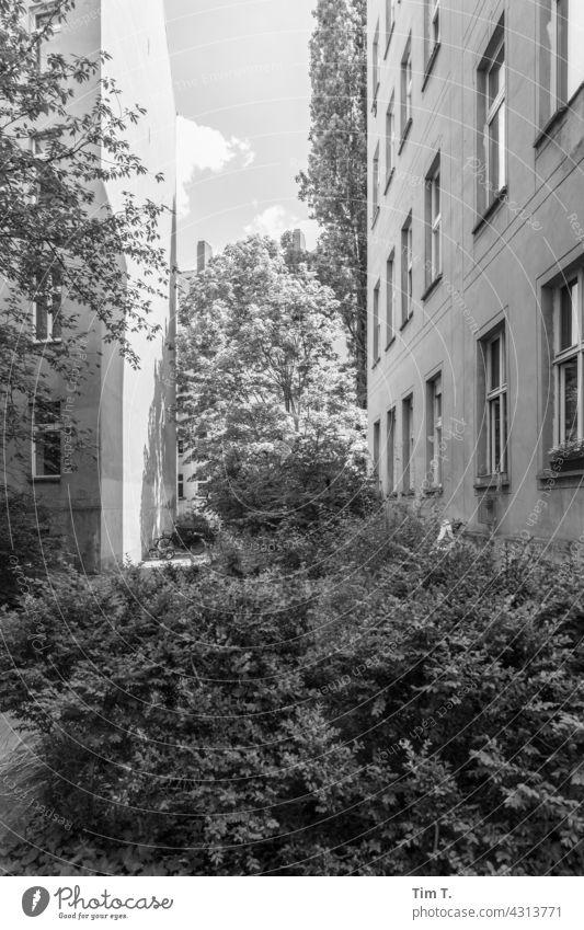 ein Hinterhof in Prenzlauer Berg Berlin s/w bnw Außenaufnahme Stadt Tag Hauptstadt Menschenleer Schwarzweißfoto Stadtzentrum Altstadt Bauwerk Gebäude