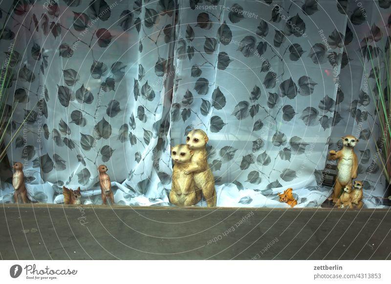 Schaufenster mit Erdmännchen erdmännchen tier nagetier puppe plüschtier spielzeug dekoration herde familie zusammensein gruppe gemeinschaft horde gardine