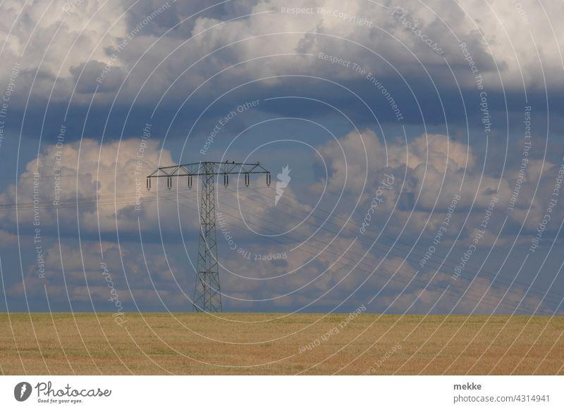 Stromleitung über einem sommerlichen Getreidefeld vor wolkigem Himmel Strommast Energie Elektrizität Hochspannungsleitung Energiewirtschaft Umwelt Energiekrise