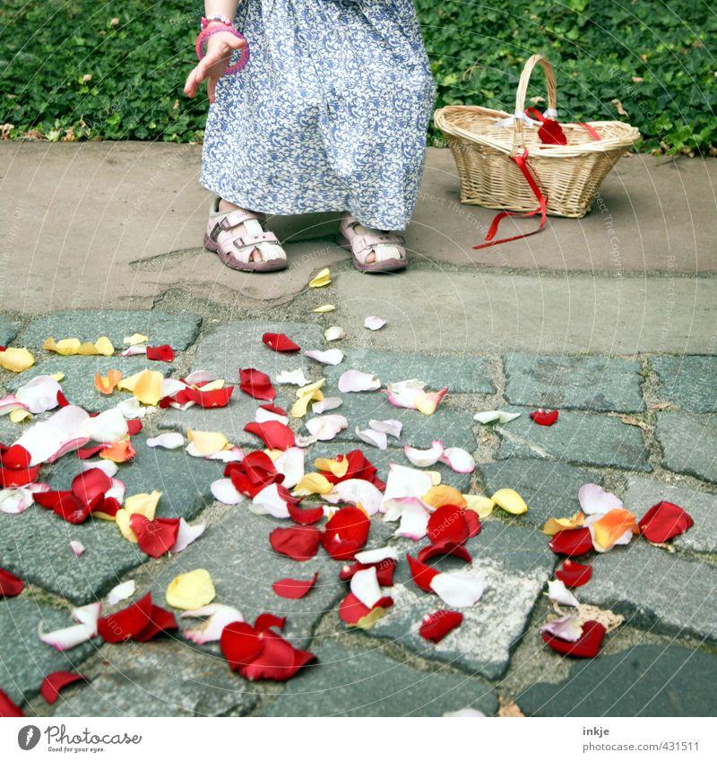 Blumenmädchen IV Feste & Feiern Hochzeit Kleinkind Mädchen Kindheit Leben Hand Fuß Unterleib 1 Mensch 3-8 Jahre Blüte Blütenblatt Kleid Sandale liegen werfen