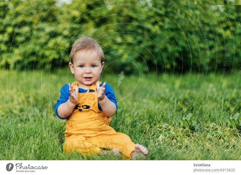Glückliche charmante Baby Junge in modische Kleidung sitzen auf dem Gras im Garten an einem Sommertag Kind niedlich bezaubernd Tag Sitzen grün Spaß Park Wiese