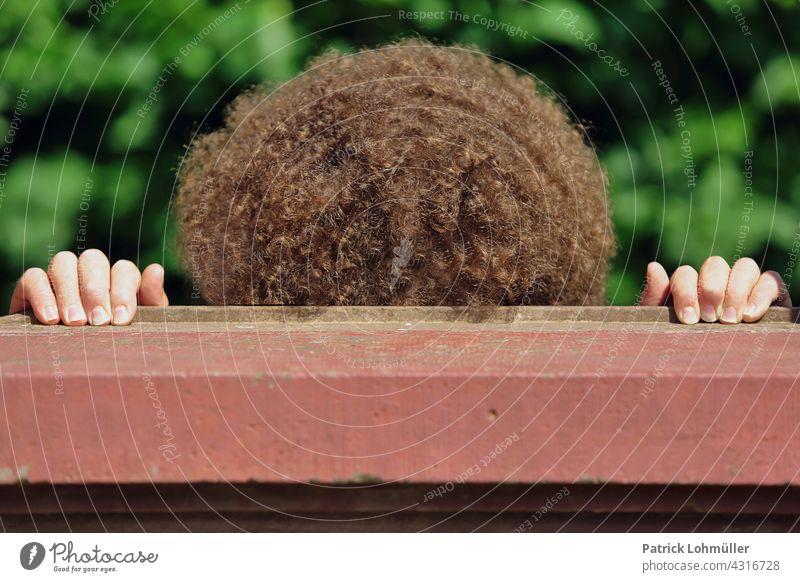 Mauerlöckchen mann frisur locken haare braun gelockt kraus hände detail detailaufnahme volles haar füllig dick breit gewachsen mauer mensch person versteck