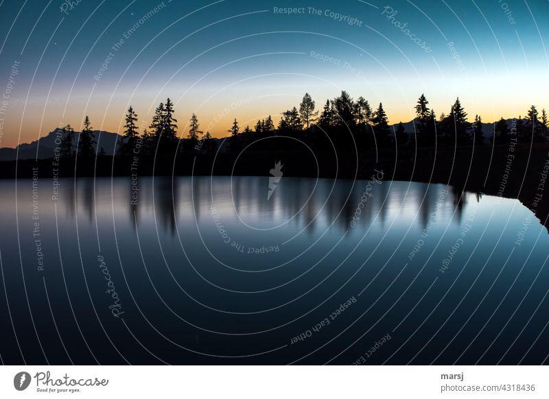 Die blaue Stunde an einem See. Die Bäume spiegeln sich im Wasser Schatten bedrohlich trist kalt Traurigkeit Trauer dunkel Gebirgssee Natur außergewöhnlich