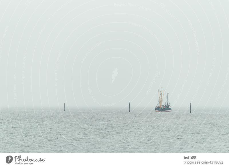 ein Fischerboot läuft bei diesigem Wetter aus dem Hafen aus Bootsfahrt Angeln Hochseefischer Nebel Nebelschleier diesiges Wetter Küste Schifffahrt Meer Wellen
