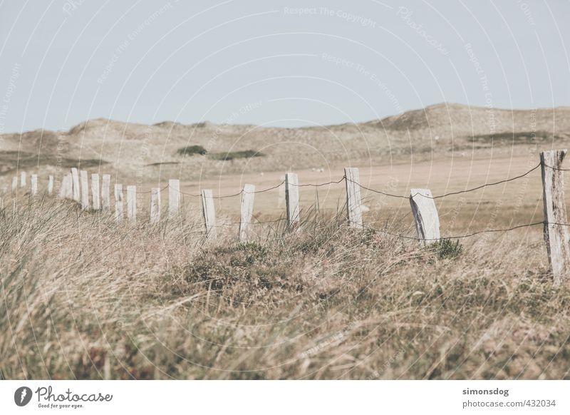 line Umwelt Landschaft Wolkenloser Himmel Wärme Dürre Pflanze Gras Sträucher Farn Wildpflanze Wiese Hügel Trennung Zaun Drahtzaun Holzpfahl abgelegen trocken