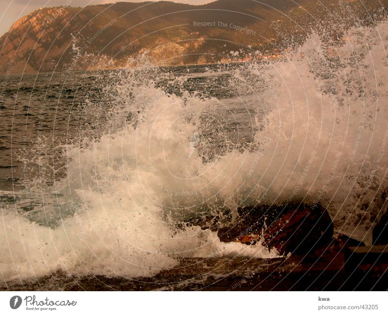 brandung Brandung Meer Cinque Terre