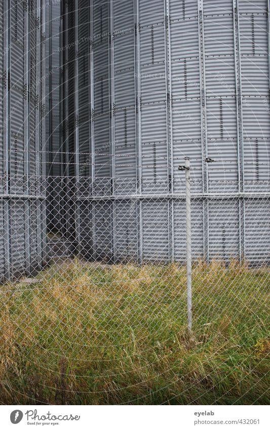 Siloette grün kalt Wand Gras Mauer Architektur Gebäude grau Metall Energiewirtschaft hoch trist Technik & Technologie Sicherheit Industrie Landwirtschaft