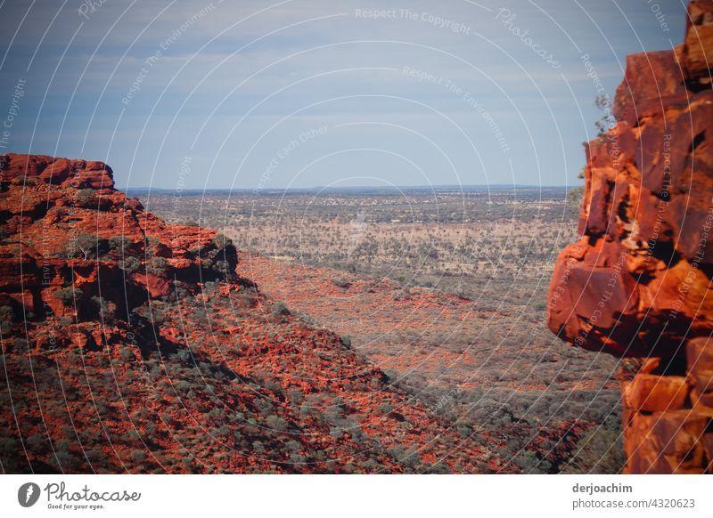 Blick vom Kings Canyon, mit seinen roten Felsen in das  Outback. Natur Australien Landschaft Menschenleer Panorama (Aussicht) Himmel Farbfoto Wetter Sommer
