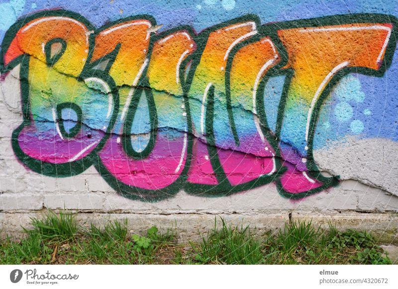 BUNT wurde in großen, bunten Buchstaben an eine Wand gesprayt / Graffito / Farbe / kreativ Graffiti sprayen farbig Jugendkultur Kunst Kunstschrift Straßenkunst