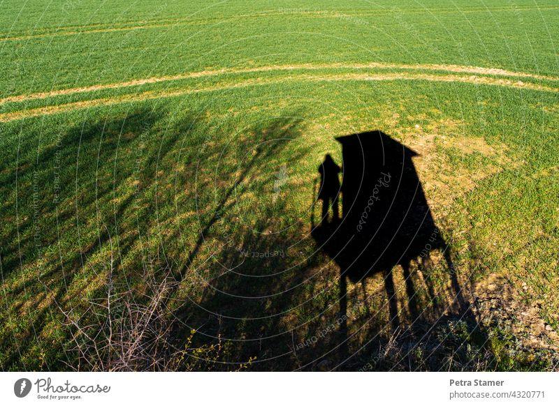 Fotojäger Schatten Schattenspiel Jäger Jagd Hochsitz Aussicht Feld Landschaft Natur Baum grün schwarz Außenaufnahme beobachten stehen Mensch