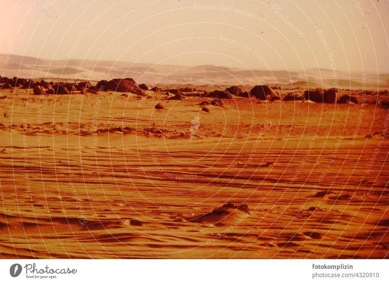 Sahara Wüste wüst Afrika Sand Ferien & Urlaub & Reisen Abenteuer Menschenleer Landschaft Natur Düne Wärme Sonne trocknen heiß extrem arabisch Safari Einsamkeit