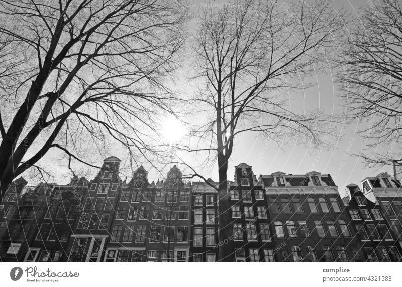 Winter in Amsterdam Niederlande Stadt Krachten Häuser schwarz weiß Stadtzentrum Kanal historisch alt Sehenswürdigkeit Bäume kalt