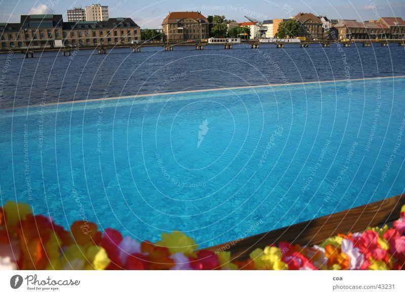 sommer in berlin Wasser Blume blau Sommer Haus Berlin Gebäude Europa Elektrizität Fluss Schwimmbad Becken Hawaii Spree hell-blau Chlor