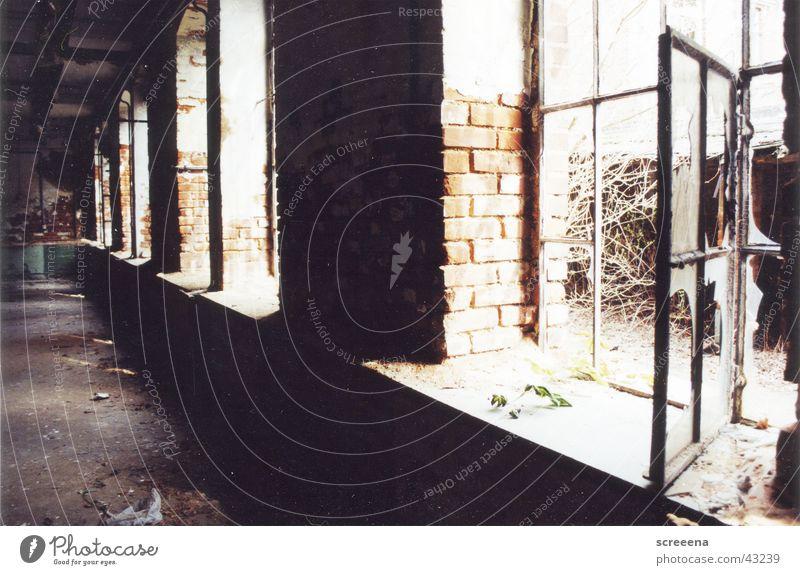 This Is Our Sound Haus Fenster Graffiti Architektur offen analog verfallen Leipzig Ruine Industrielandschaft