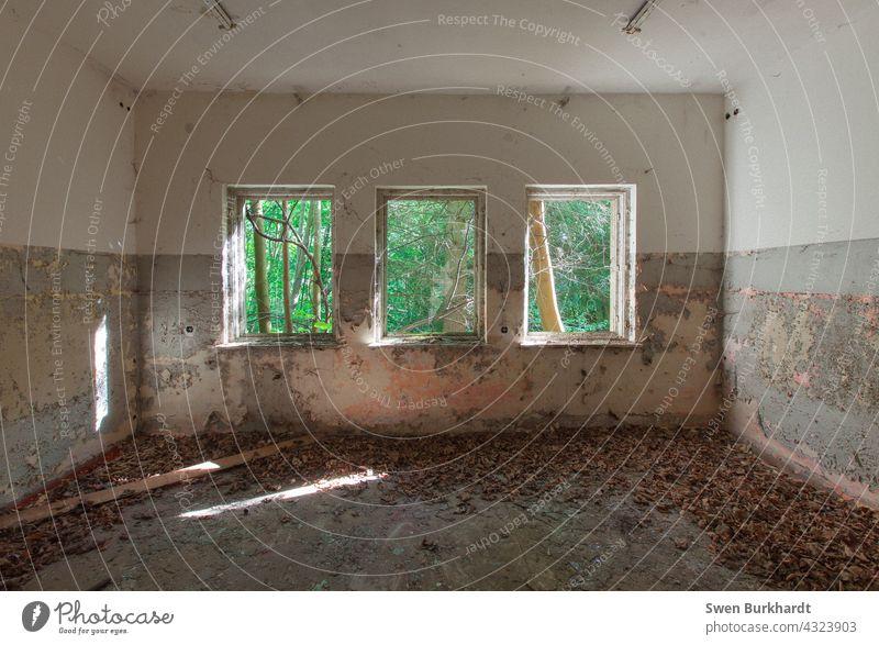 Drei Fenster die auf sind Laub liegt auf dem Boden und die Farbe an der Wänden bröckelt leicht Raum Laubbaum Shabby Chic Dekoration & Verzierung altehrwürdig