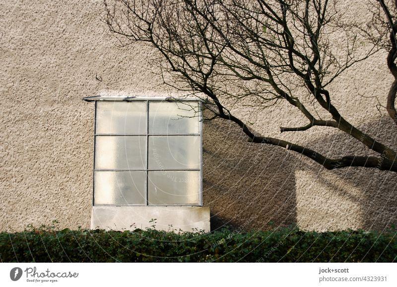 Eingang mit Windfang im Winter Architektur Eingangstür Tür kahler Baum Sonnenlicht Schatten Hecke Wintertag Zweige u. Äste Putzfassade DDR Haus Berlin Marzahn