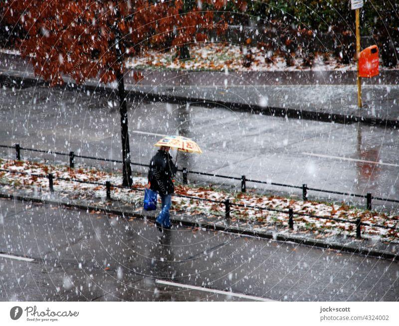 Überqueren einer Straße mit baulicher Trennung am winterlichen Tag Fußgänger Verkehrswege Mensch gehen falsch Vogelperspektive Laubbaum Schneefall Winter